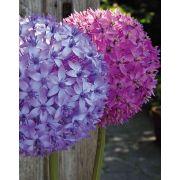 Artificial allium flower LIECHA, purple, 80cm, Ø14cm