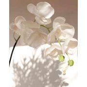 Artificial Phalaenopsis orchid spray DAJANA, white, 4ft/115cm