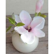 "Magnolia FEMI in a ceramic pot, light pink, 9""/23cm, Ø7""/17cm"