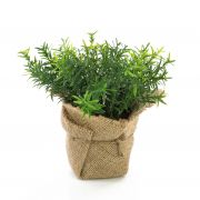 "Fake thyme VITUS, in a jute bag, green, 7""/18cm, Ø8""/20cm"