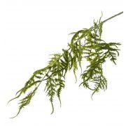 "Fake asparagus plumosus branch CHRISTIAN, green, 33""/85cm"