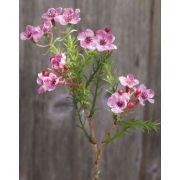 """Artificial wax flower AISHA, pink, 10""""/25cm"""