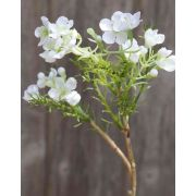 """Artificial wax flower AISHA, cream-white, 10""""/25cm"""