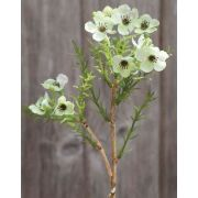 """Artificial wax flower AISHA, cream-green, 10""""/25cm"""