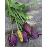 "Artificial bouquet of tulips LONA, purple-green, 14""/35cm, Ø6""/15cm"